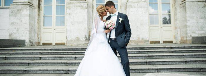 Оператор на свадьбу